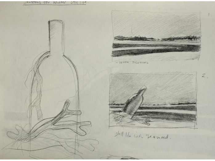 Pencil sketch – still life with seaweed part 2